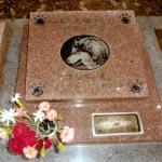 ゴンちゃんのお墓