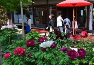 花の寺のイメージ